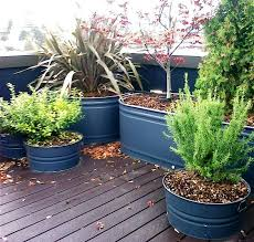 galvanized trough planters iimajackrussell garages best