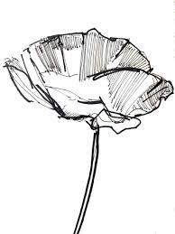 simple flower sketch draw8 info