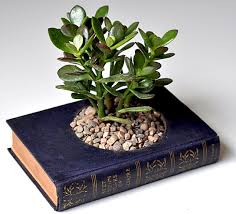 Make A Brick Succulent Planter - diy how to create a gorgeous planter from an old hardcover book