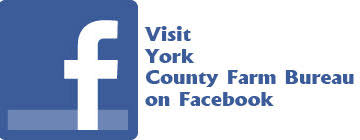 bureau york pennsylvania farm bureau york county farm bureau
