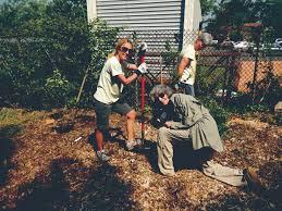 community planting at manorhaven preserve port washington news