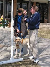 Leader Dogs For The Blind Rochester Michigan Deaf Blind Guide Dog Training Leader Dogs For The Blind
