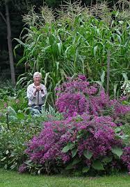 vegetable gardening for smarties not dummies leslie land in