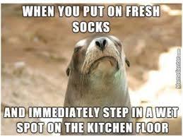 Sock Meme - when you put on fresh socks meme