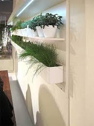 indoor herb garden ideas for decoration small garden ideas
