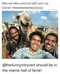 Camel Memes - may we take a picture with your ca camel heeeeeeeeeeeyyyyyyy should
