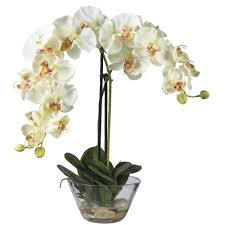 Silk Flower Depot - nearly natural double phalaenopsis with glass vase silk flower