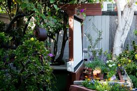 Backyard Outdoor Theater Show Thyme How To Build An Outdoor Theater In Your Garden The