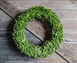 boxwood wreath preserved boxwood wreaths mills floral company