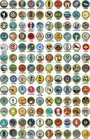 Cooking Merit Badge Worksheet Badges Ref Game Pinterest Badges Eagle Scout Ceremony And