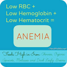 212 best anemia diet images on pinterest anemia diet health and