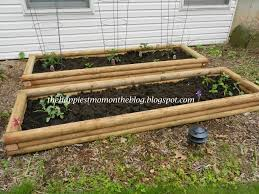 fall raised garden bed timber dovetail timbers raised timber