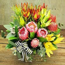 flower basket australiana flower basket natives flowers for everyone