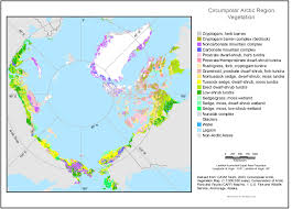 Anchorage Alaska Map by Gina Circumpolar Arctic Vegetation Map Vegetation Layer Only