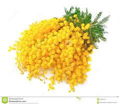 7 best golden wedding anniversary images on pinterest floral