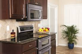 plants for on top of kitchen cabinets top 9 low light indoor plants to brighten up your kitchen or