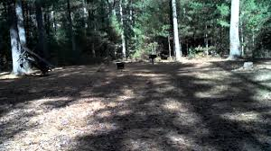 Harold Parker State Forest Map by Site 54 Harold Parker State Forest Campground Youtube