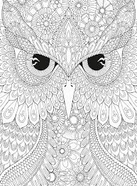 465 best coloring owl images on pinterest colouring owl and owls