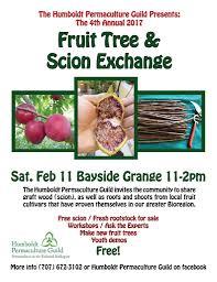 scion plant fruit tree and scion exchange u2013 humboldt permaculture guild
