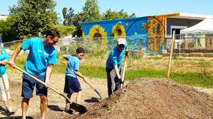 san diego farm to table from dreams to food forest farm to table program yields big