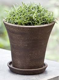 leaf u0026 learn pots planters containers jugs vases