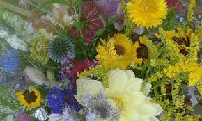 cut flowers how growing cut flowers on a small scale is helpful for bees and
