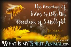 quotes about reading shakespeare bee quotes u0026 sayings animal quotes u0026 sayings