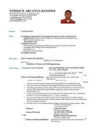Construction Vice President Resume Surveyor Resume Resume Cv Cover Letter