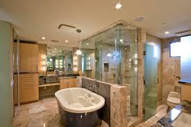 Tub Glass Doors Frameless by Bathroom Frameless Glass Shower Glass Shower Doors Shower Panels