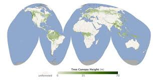 global map earth a global map of forest heights environmentalresearchweb