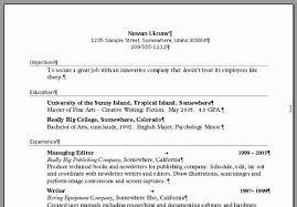 Auditor Resume Sample Resume Set Up Samples Resume Set Up 27042017 Resume Template