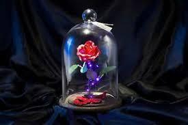 beauty beast enchanted rose free glass etching ebay