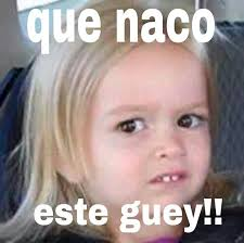 Jesus Alejandro Memes - list of synonyms and antonyms of the word si guey