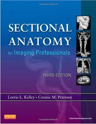 Mri Sectional Anatomy Sectional Anatomy For Imaging Professionals Selfdirectedce Com