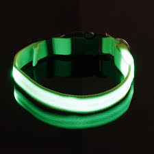 Light Up Dog Collar Collars For The Love Of A Pet