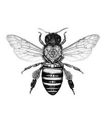 32 best detailed bee tattoo images on pinterest bumble bee