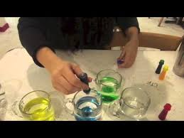 food coloring flowers science experiment youtube