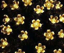 Decorative Indoor String Lights Led Lights On String Qedertek Solar String Lights Cherry Blossom