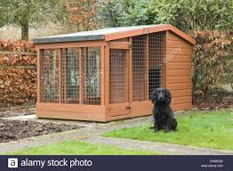 a black cocker spaniel dog and a wooden dog kennel outside in a