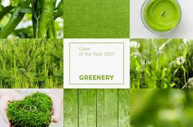 pantone color of the year 2017 announcement mac realty services decorating 2017 greenery is the new color