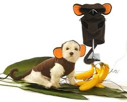 Cheap Dog Costumes Halloween Monkey Small Dog Halloween Costumes Monkey Costume Small