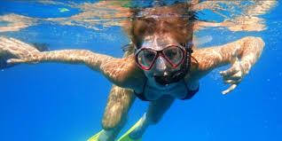 Oklahoma snorkeling images Coral reef snorkel or scuba dive trip discover veracruz tours jpg