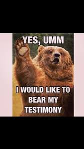 Patient Bear Meme - 97 best funny bears memes and pics images on pinterest funny