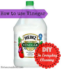15 Ways To Clean With by 131 Best U0026 Span Cleaning Images On Pinterest Green Cleaning