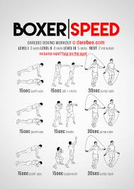 boxer dog growth chart boxer speed workout boxing class and workouts pinterest