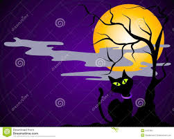 halloween background designs black cat halloween background stock images image 3131394