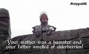 Monty Python Meme - medieval meme elderberries pythonland