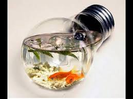 100 cool ideas more fish tanks