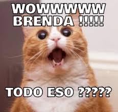 Brenda Memes - wowwwww brenda todo eso memes en quebolu
