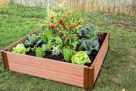raised garden bed frame use red cedar for raised bed gardens frame